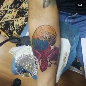 Tatuajes en el brazo - Tatuaje Guacamayo