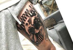 Estudios de tatuajes en Valencia - Tatuajes de Perros
