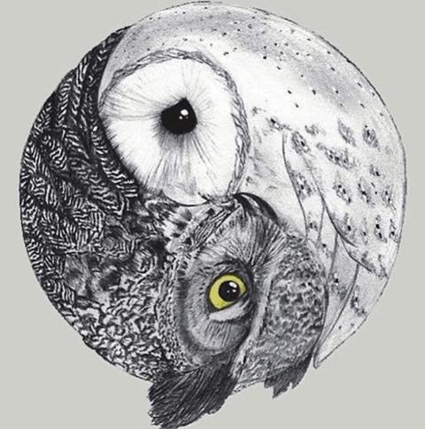 tattoo de buho en forma de yin y yang