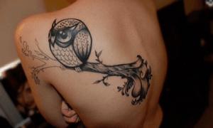 tattoo de buho colgado en una rama en la espalda