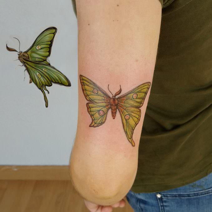Tatuaje de mariposa a color en el brazo