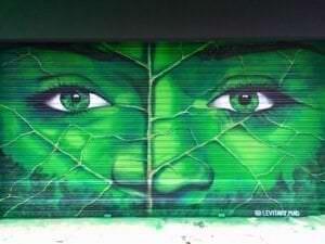 Graffiti profesional - Mural en persiana metálica: Bioface