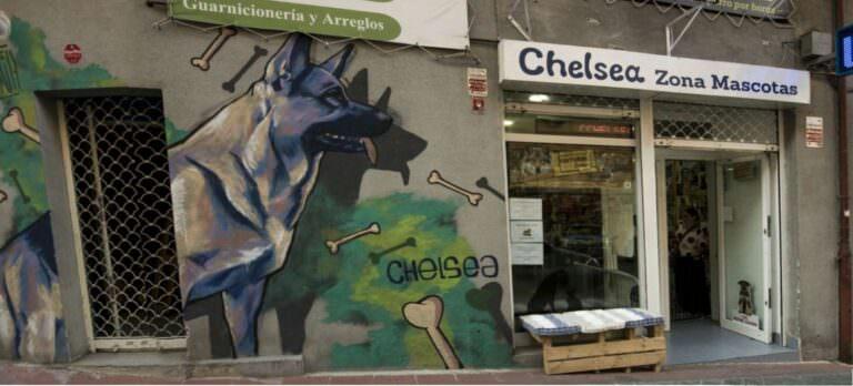 Decoración negocio veterinaria con mural decorativo