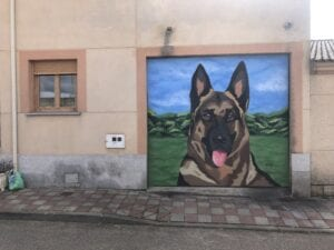 Graffiti comercial en Valladolid - Decoración de persiana con Pastor Alemán