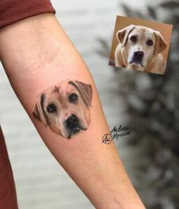 Estudios de Tatuajes en Granada - Tatuaje microrealismo mascota