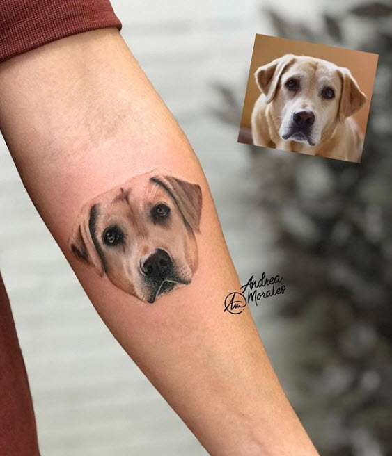 Tatuaje microrealismo mascota