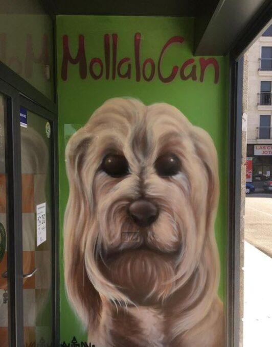 Graffiti decorativo para tienda de animales