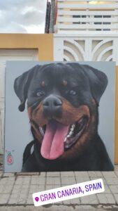 Graffiti Comercial en Las Palmas de Gran Canaria - Mural perro rottweiler