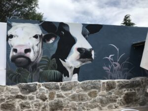 Graffiti en gimnasios - Mural ganaderia